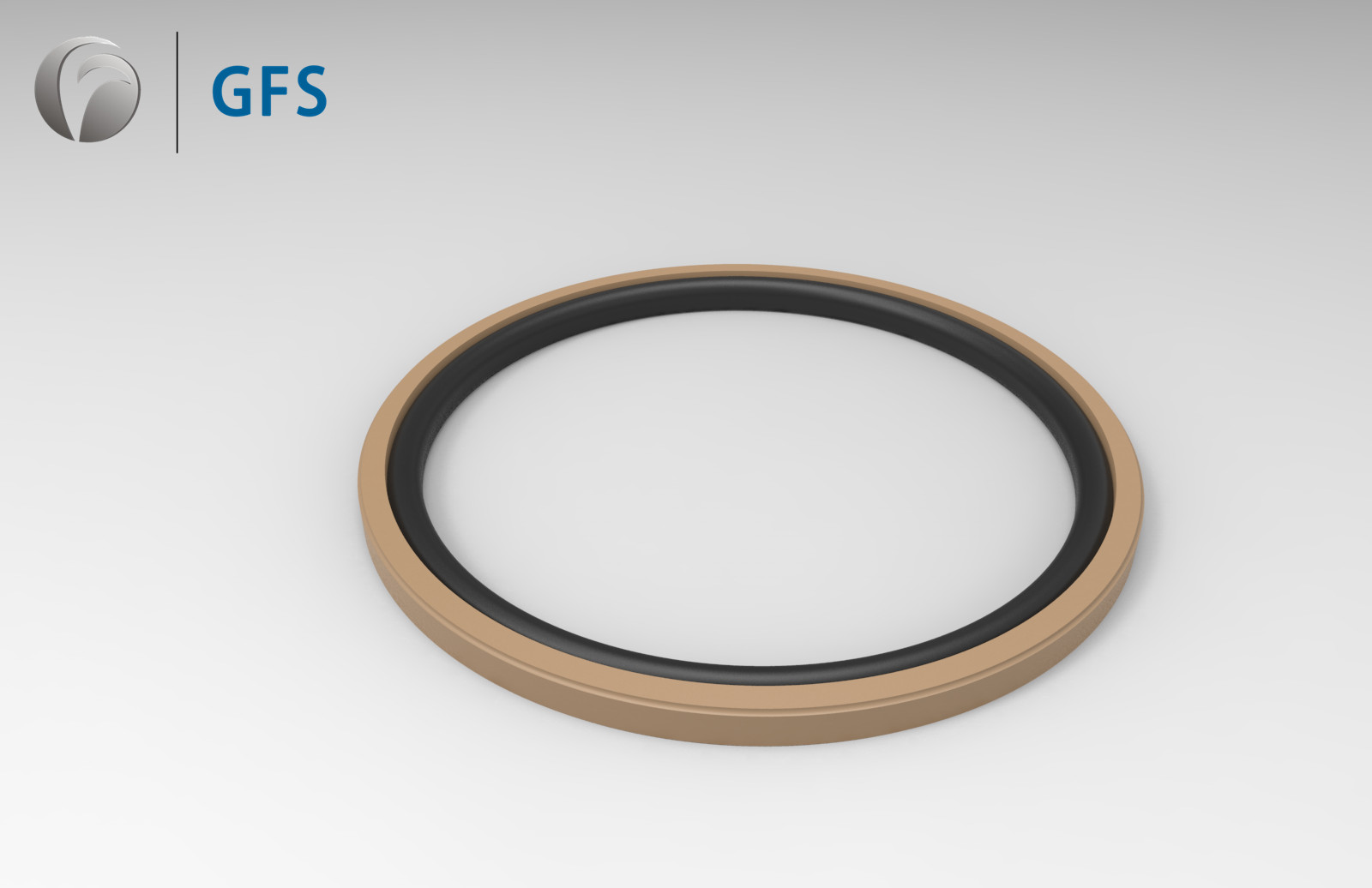 PGA -Customized Piston Seal Glyd Ring PTFE (rounded chamfer)